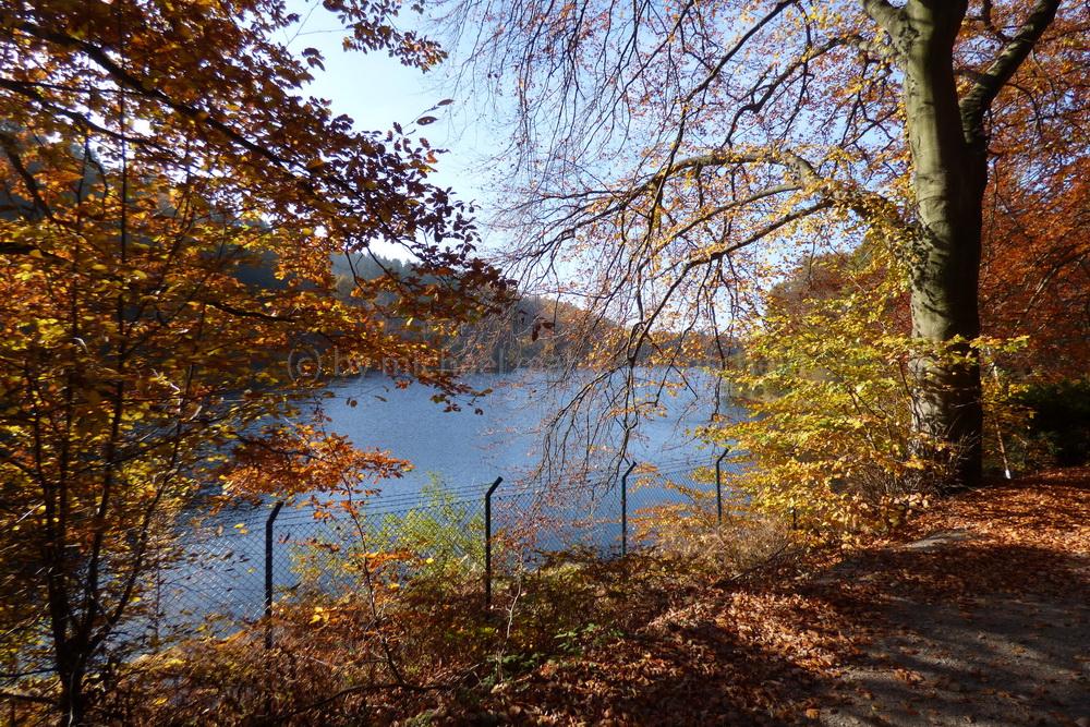 Herbst an der Eschbachtalsperre am Rasthof Remscheid