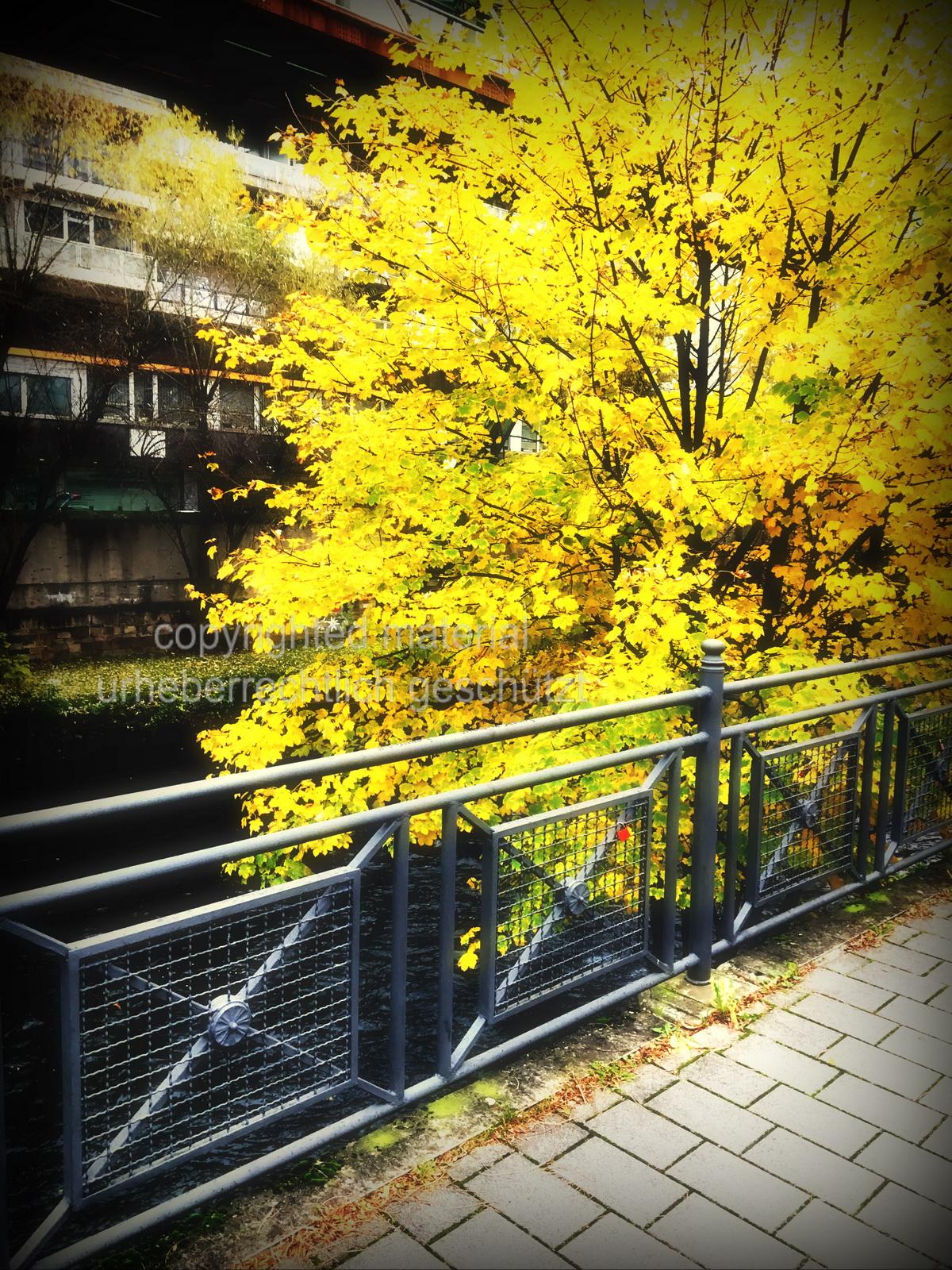 5 Momente im Herbst – Farbe und Linien in Wuppertal Elberfeld