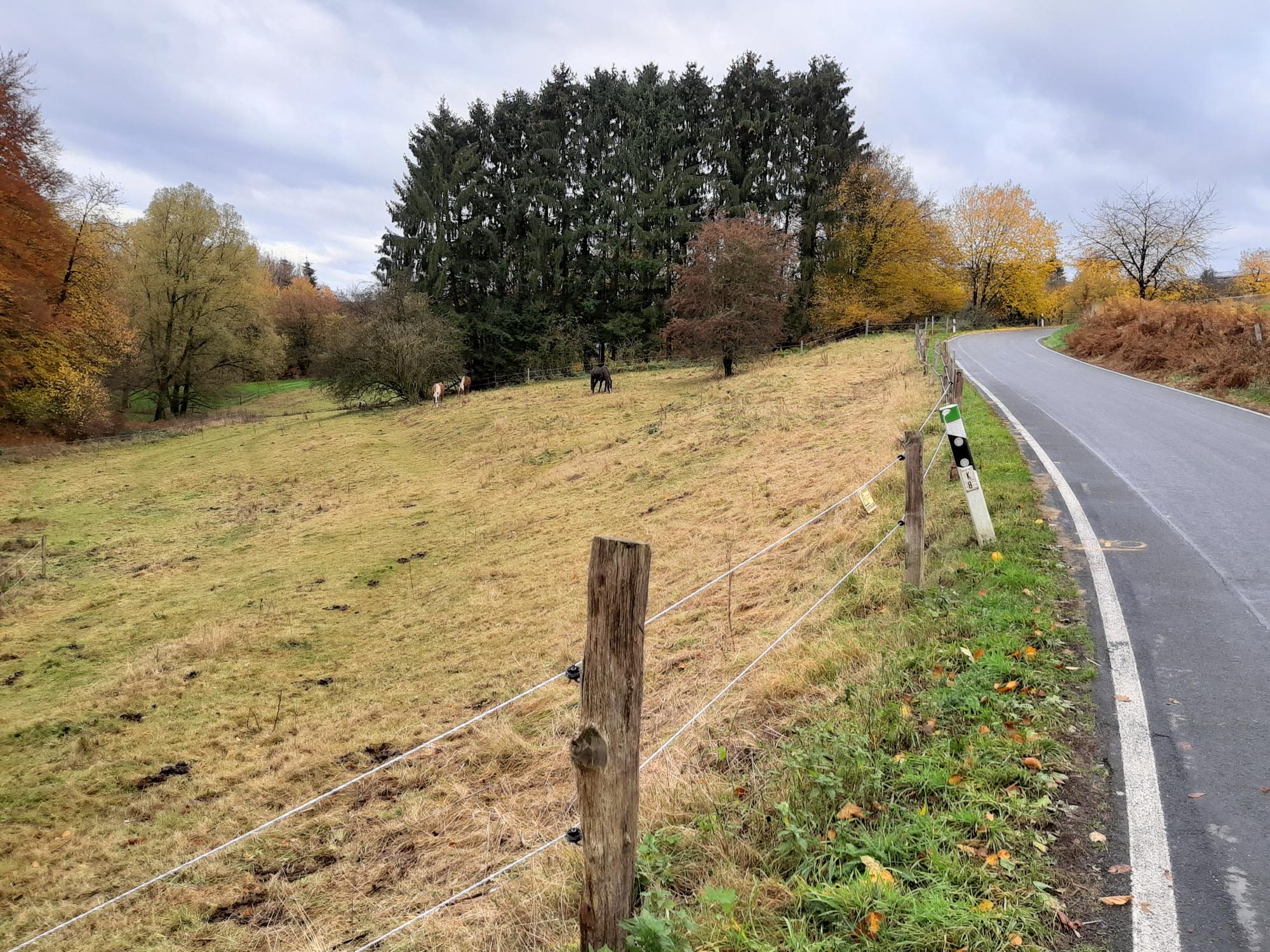 Landschaft unterwegs in der Fotografie mit der Kamera im Galaxy A7 2018